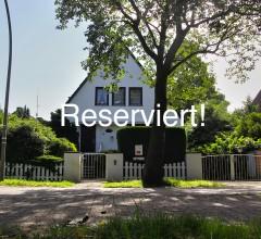 Steendammwisch_reserviert